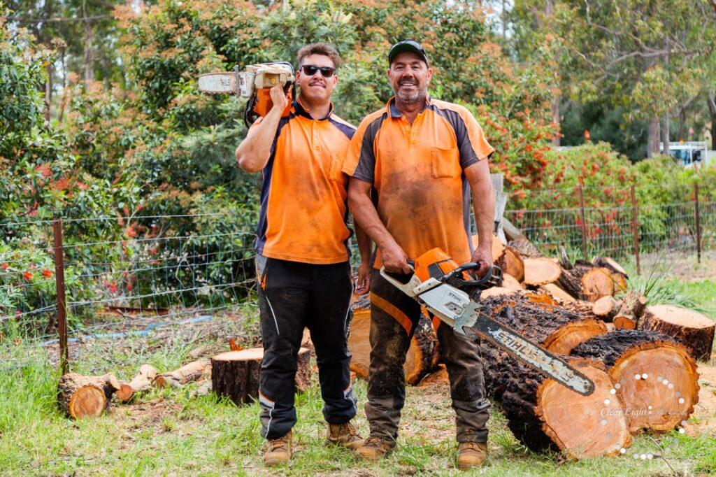 Cessnock Arborist and Tree Removals »