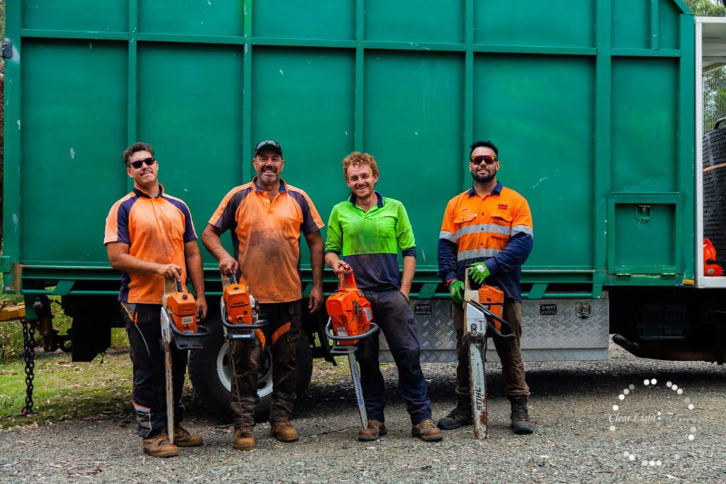 Tree Removal Services Newcastle »